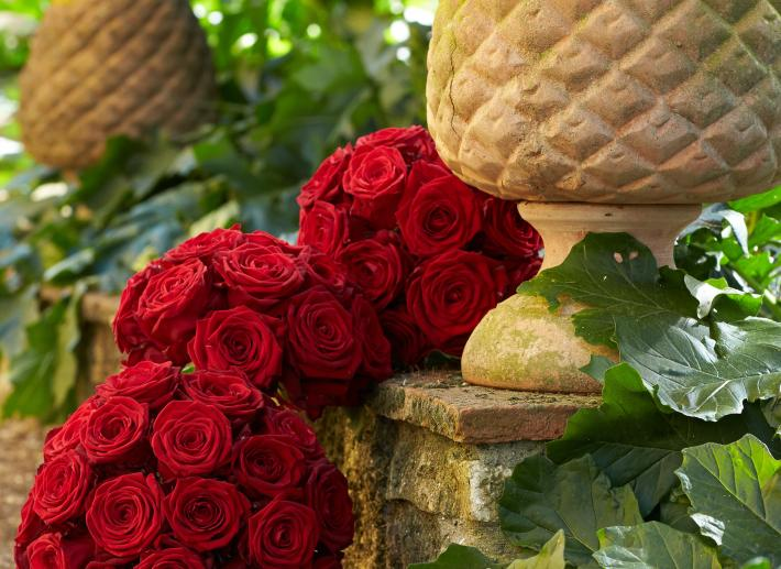 Partner - I fiori di Nadia